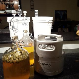 Next to a 1 gallon carboy for size comparison.