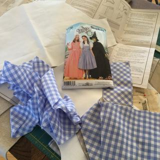 Dorothy costume under construction!! Cindy Niwot, CO