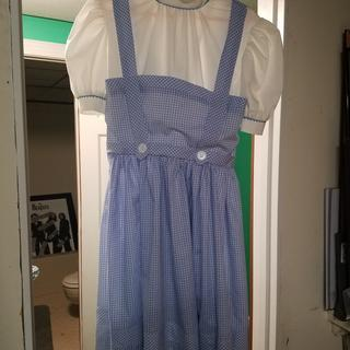 Perfect for my daughter's Dorothy costume.
