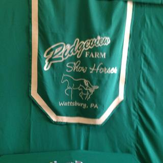 We also did 2 banners with the micro suede as accents on those. Beautiful fabric!