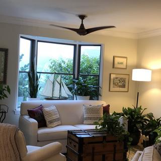 Minka Aire Wave 52 Inch Ceiling Fan