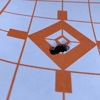 Zeroed at 100 yds.