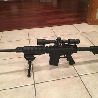 Mounted on a DPMS LR-308 with Nikon P-series 2 piece mounts.