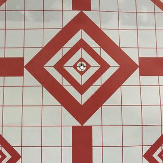 My 11th shot at 20 yards with flip up sights.