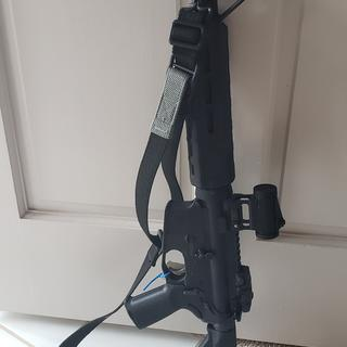 Palmetto 14.5 upper (wish they still sold them) Palmetto magpul lower with EPT.