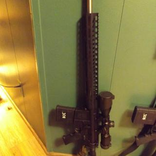 Rifle built with Starter Kit.