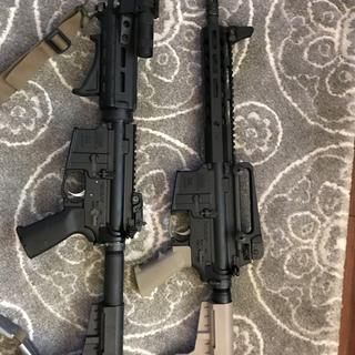 556 and 300 Blackout both from PSA.
