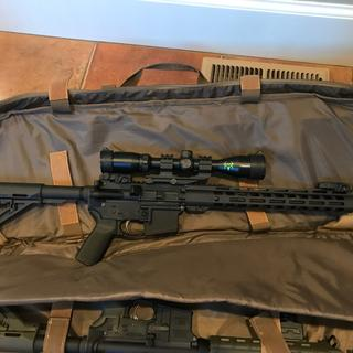 PSA 300AAC upper with Bushnell scope and Magpul BUIS.