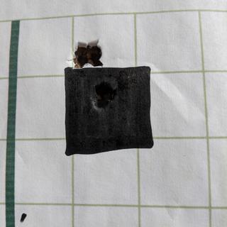 "2 shot group, scope adjustment, 2 shot group....50 yards 1"" square"