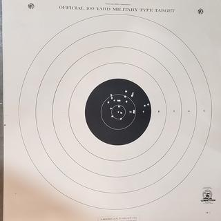 100 yard 20 shot group (rapid fire) from bench