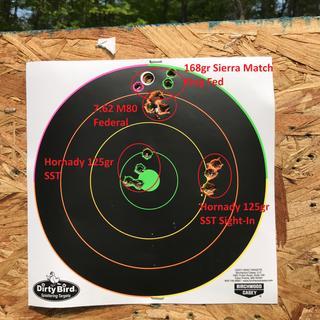 PA10 Target 100 yards