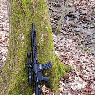 New squirrel rifle