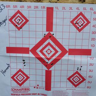 Handle ads with Hornady 75s and Beget 77s otm tacticals, American Eagle 50gr hp predator varmint
