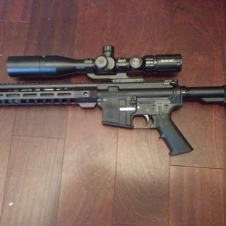 PA-15 with Primary Arms FFP glass and butt stock mod.