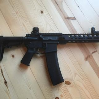 Love this gun, I bought the lower with sba3 brace and the pistol upper too from PSA. One nice gun.