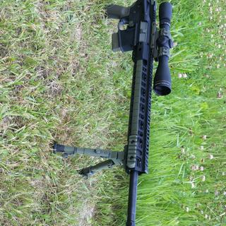 "Ar15 5.56 leupold 12×40mm 20""barell magpull components"