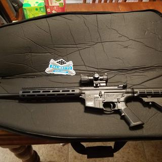 Great rifle! No issues after 300 rounds of CCI.