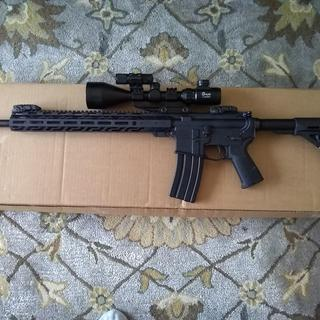AR-15 5.56 with Magpul furniture.