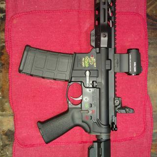 Snek Blackout. Complete PSA pistol build. Functions flawlessly. Great shooter.