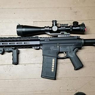 Palmetto State Armory Gen 2 AR-10 with Luepold Mark 4 MilDot Illuminated Reticle 6x24 scope.