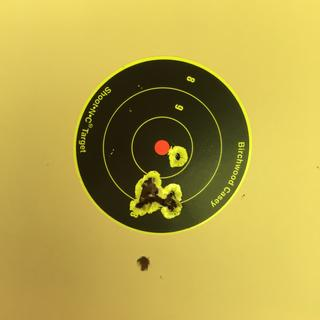 50 yds, CCI std vel 40gr x 10 rds. Red dot covered entire target so less precise than scope reticle.
