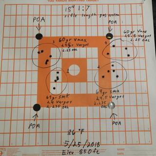 "Handloads on the PSA 18"" Rifle Length 223 Wylde 1/7 Nitride 15"" Lightweight M-lok Upper"