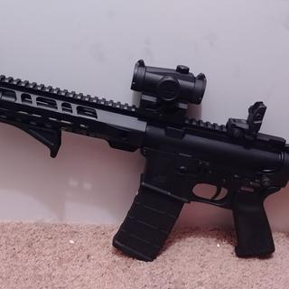 Magpul mbus sights set to cowitness with my red dot. It has shot beautifully so far