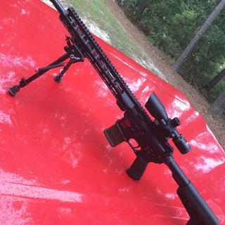 Budget scope on an Anderson lower and PSA upper. Shoots like a dream!