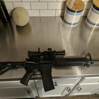 Had enough dough left to buy a decent scope!