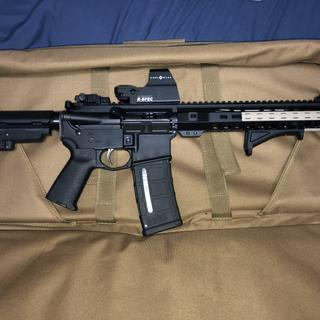 Paired it with a stripped psa lower