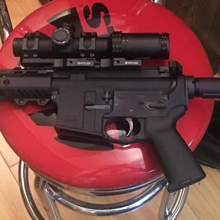 With Bushnell 1-4x scope