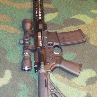 PSA lower, magpul hardware, nickel trigger, 3X9 scope.