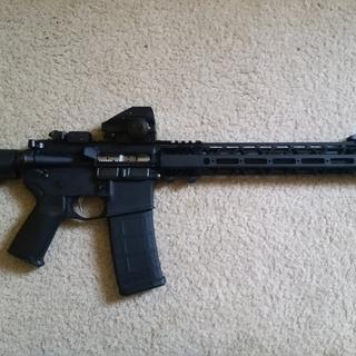 Paired with PSA lower. Everything you'd expect from a good quality ar