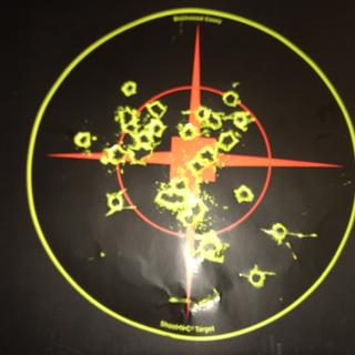 """100 Yards 16"""" Palmetto State Stanless barrel with an ATN 5-20 scope. The target is 8"""""""