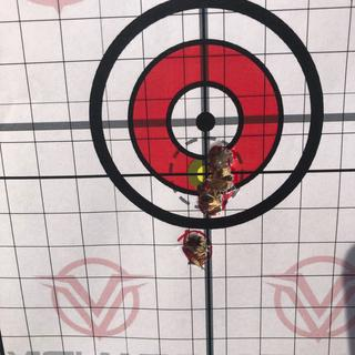 Not bad once I got irons sighted in at 36yds.