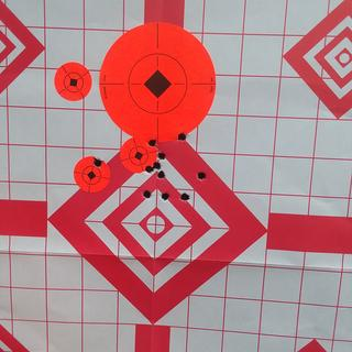 50 yards with the magpul flip up sights
