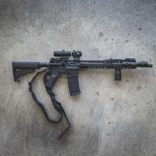 PSA M4 With PSA Custom 2 MOA Red Dot Optic