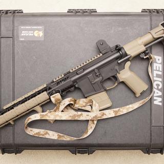 Daniel Defense fixed sights | LaRue Tactical MBT | SB Tactical PDW pistol brace | Magpul plastic