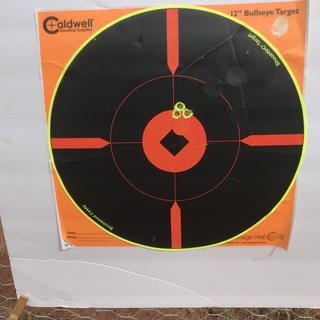 This is out of my PSA AR-10 in 308 at 200 yards. Very pleased!