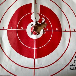 50 yards 150 rounds Remington Thunderbolt 40gr bulk ammo Red dot sight (Romeo 5)