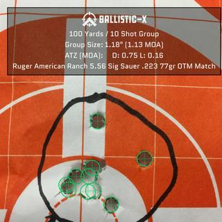 10 shot group at 100 yards.
