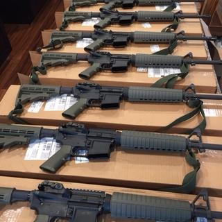 One Shepherd's 10 New PSA Mid-Length 16in Carbines, ODG