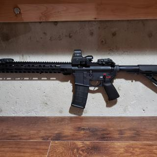 My build. Added a fostec echo binary trigger and a sightmark red dot, all from the kit otherwise.