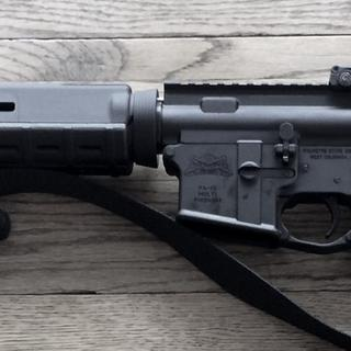 This is my PSA/RRA rifle.  There are many like it, but this one is mine.  Maybe! ;)