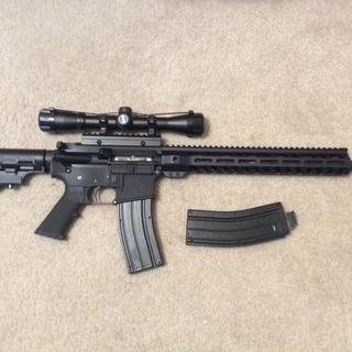 PSA 22LR upper with Bushnell 4x scope on Anderson lower. Black dog magazines.