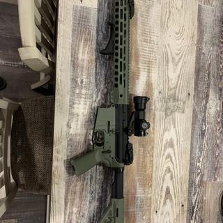 Anderson lower, magpul fore grip. Whole build for about 500$