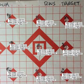 The 6 groups on the left are Lapua Polar Biathlon, the 6 on the right are RWS Target Rifle ammo.