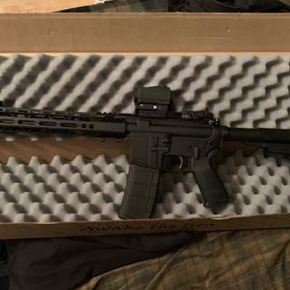 Kit built on a Spike's Tactical lower with a Sig Romeo 5 on it