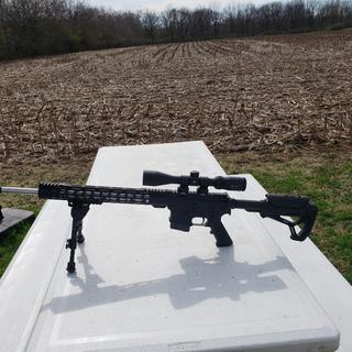 224 Valkyrie on a Anderson lower and Vortex 9x40