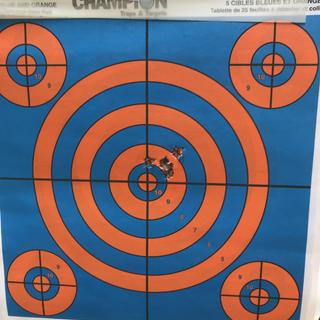 6 shot group